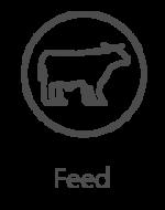 3-feed